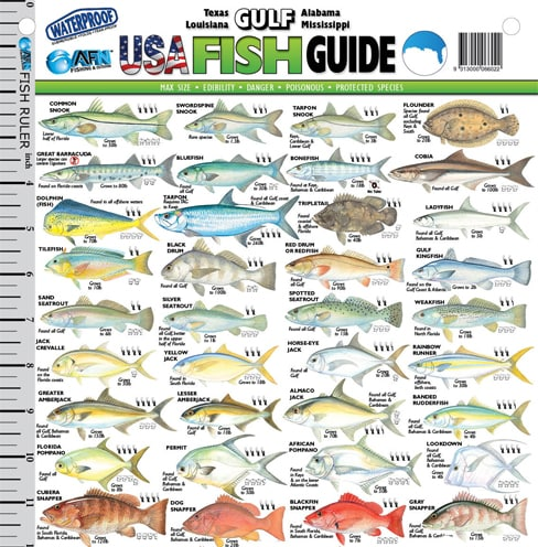 Pin gulf fish on pinterest for Gulf fish species