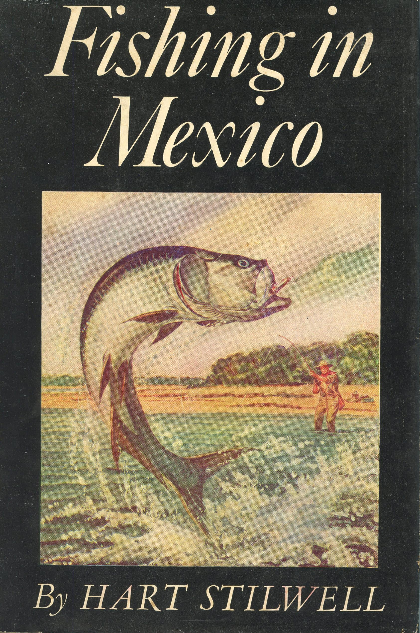 Fishing in mexico hart stilwell fishing tackle retailer for Fishing in mexico