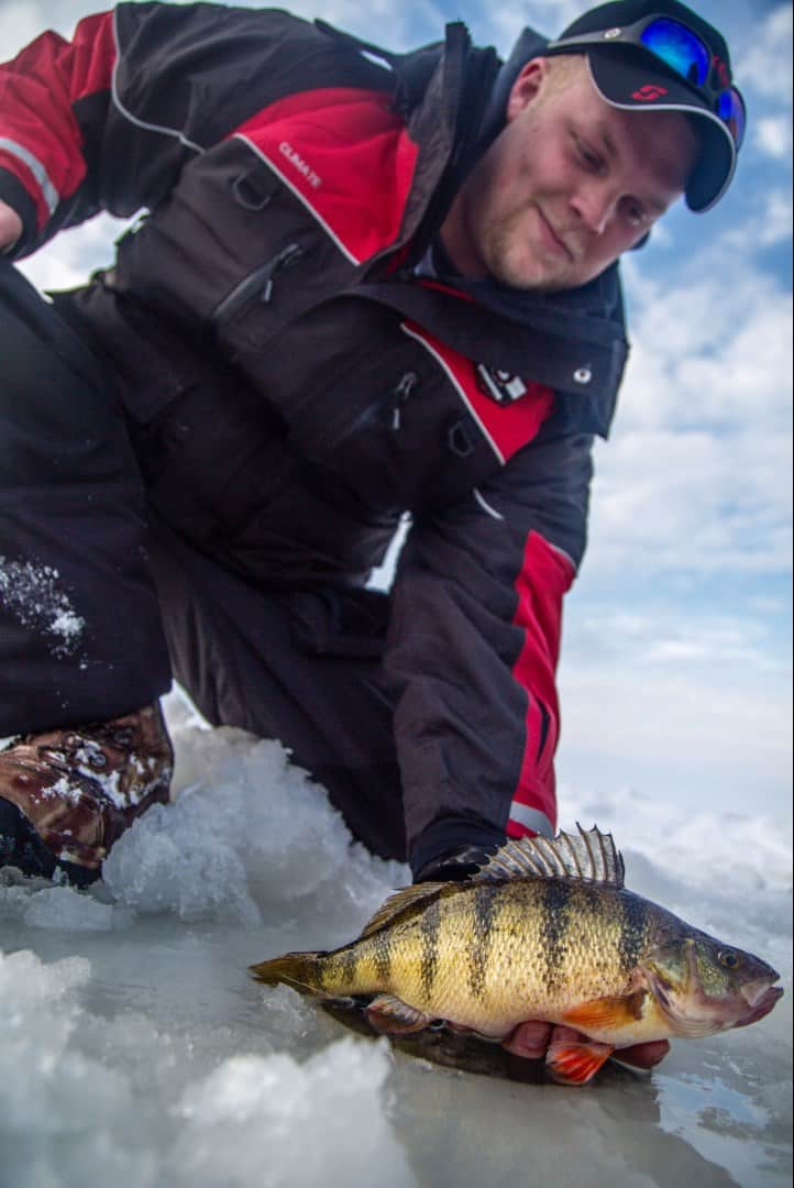 hard and soft fishing hires industry veteran alec beigle